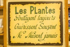 Herboristerie le pere blaize for Conseil sur les plantes